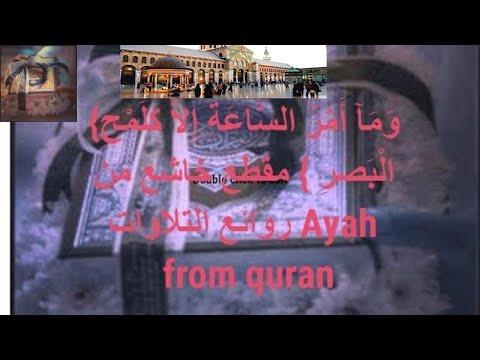 {وَمَآ أَمْرُ السَّاعَةِ إِلاَّ كَلَمْحِ الْبَصَرِ } مقطع خاشع من روائع التلاوات Ayah from quran