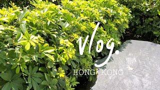 홍콩 직장인 브이로그 | 코로나 후 첫 출근 | 무급휴…