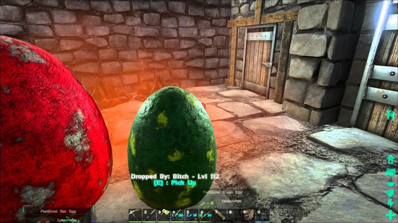 Ark Survival Evolved Incubator Room Incubating 3 New Born  Dino(Pachy,Stego&T-rex)