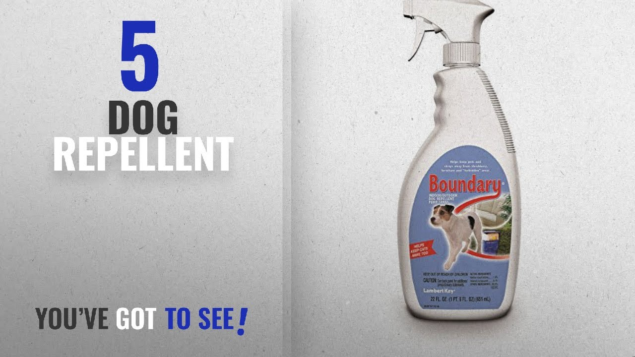 Top 5 Dog Repellent 2018 Best Ers Lambert Kay Boundary Indoor Outdoor Pump