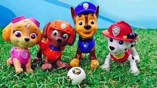 Игрушки Щенячий Патруль – Щенки Спасатели в видео для детей.