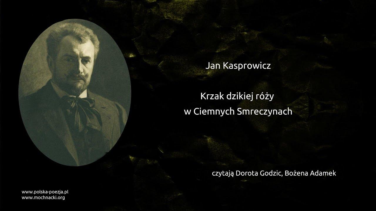 Jan Kasprowicz Krzak Dzikiej Róży W Ciemnych Smreczynach