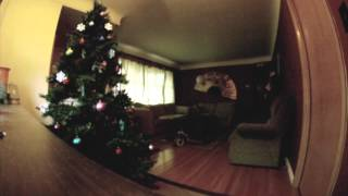 Suzy the beagle plays with Christmas ornaments