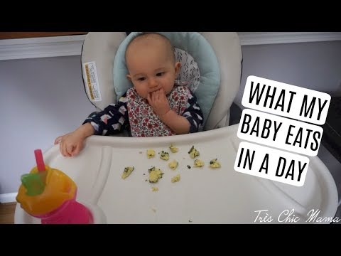 WHAT MY 12 MONTH OLD EATS IN A DAY| Tres Chic Mama