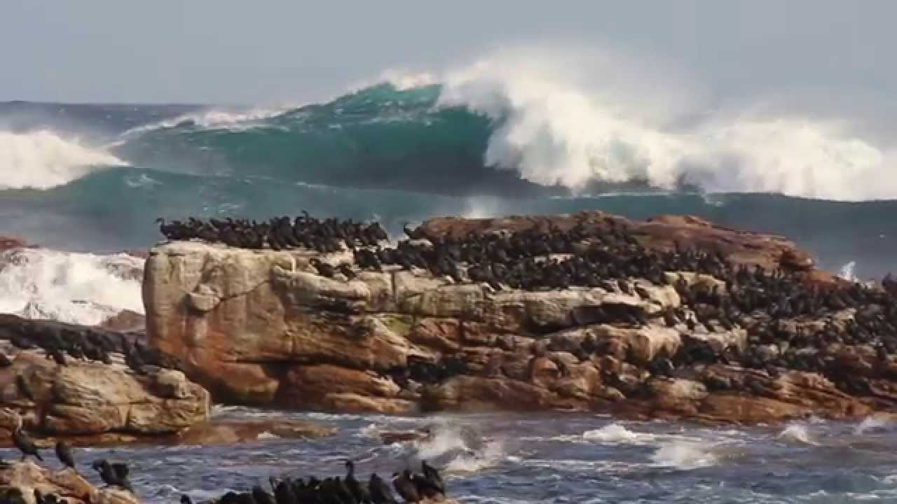 South africa cape town port elizabeth youtube - How far is port elizabeth from cape town ...