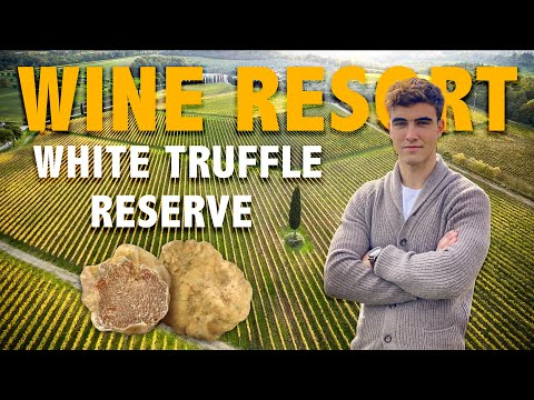 WINE RESORT FOR SALE IN SIENA TUSCANY, ITALY - WHITE TRUFFLE RESERVE