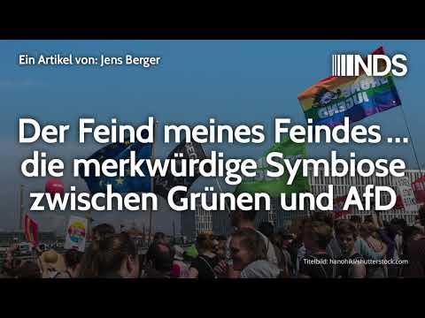 Der Feind meines Feindes … die merkwürdige Symbiose zwischen Grünen und AfD | Jens Berger