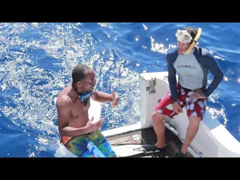 180 Days In Dominica Ep5: Whale Whisperer