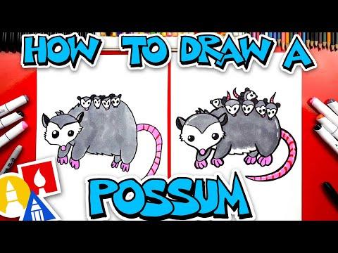 How To Draw A Possum (Opossum)