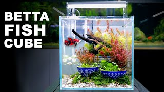 Aquascape Tutorial: IKEBANA BE…