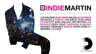 Various Artists - Indie Martin [FULL ALBUM STREAM]