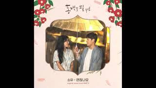 소유 (SOYOU) - 괜찮나요 (동백꽃 필 무렵 (KBS2 수목드라마) OST - Part.5)