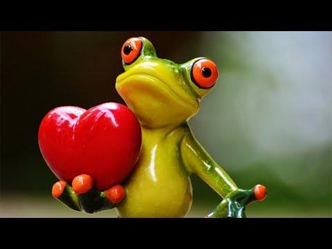 Sending you some LOVE!