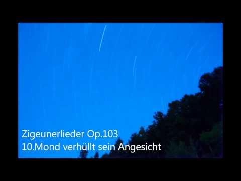 """Johannes Brahms  Zigeunerlieder,Op.103"""" Mond verhüllt sein Angesicht"""" GasshodanMAI"""