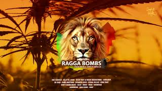 RAGGA BOMBS - Special Mix Vol.6 (Mixed By Sample Lee)