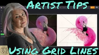 Using Grid Lines & Shapes to Improve Your Drawings