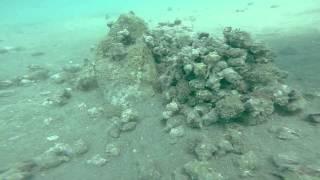 Gopro Diving at Sican Adasi