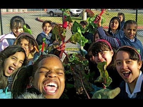 How to Start a School Garden - Help Kids Grow Healthy Food!