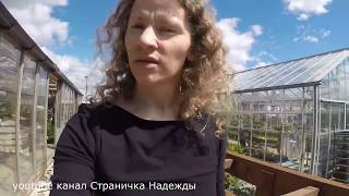 За кормом не ГМО // Соя в комбикорме // Прогулка с нами
