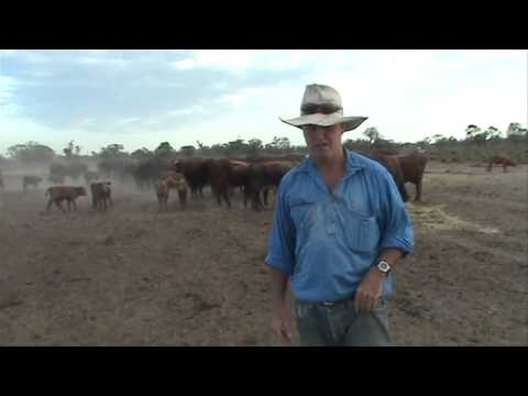 NSW Farmers Drought