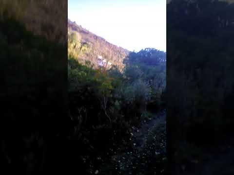 Treino trail Calhandriz