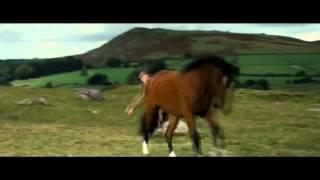War Horse - Escena de la llamada