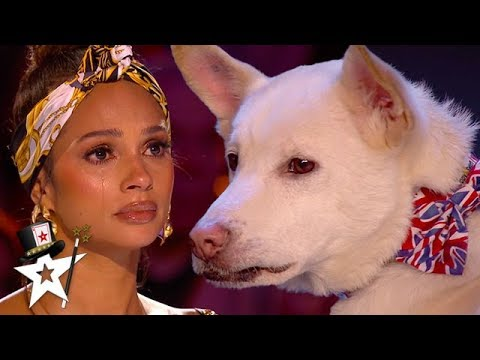 Judges Cry Over Emotional Dog Magic Act on Britain's Got Talent 2020 | Magician's Got Talent