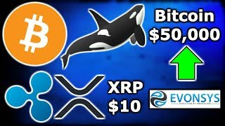 CRYPTO Whale Says BITCOIN Price Will Reach $50,000 - XRP to $10 in Next Bull Run? Ripple XRP EvonSys
