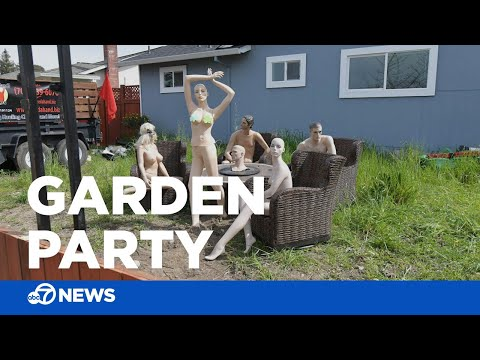 Wendy - Man Displays Naked Mannequins After Neighbor Complains About Fence