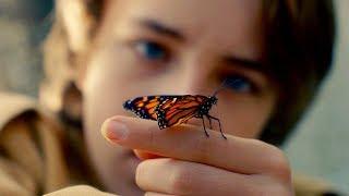 Редкая бабочка - Трейлер на Русском | 2018 | 1080p