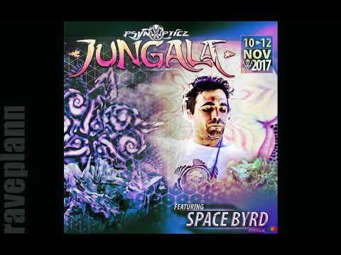 Pytrance Jungala Festival SPACE BYRD PsynOpticz Records Jungala 2017 PROMO