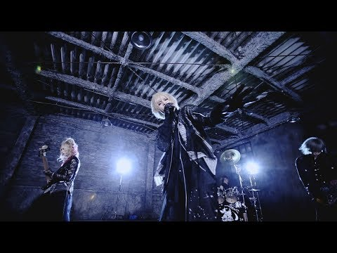 Royz「AREA」MUSIC VIDEO