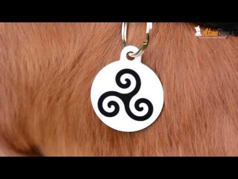 f6df4df1e503 Collier médaille bandana chien Bretagne Hermine Triskel. Matthieu AtooDog