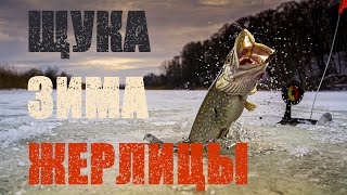 Зимняя рыбалка 2021 Щука на жерлицы Дейма