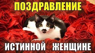 Поздравление с 8 марта! В международный женский день лучшее поздравление с кошками и цветами!