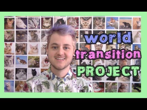 transition through the world PROJECT.