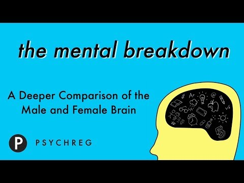 A Deeper Comparison of the Male and the Female Brain