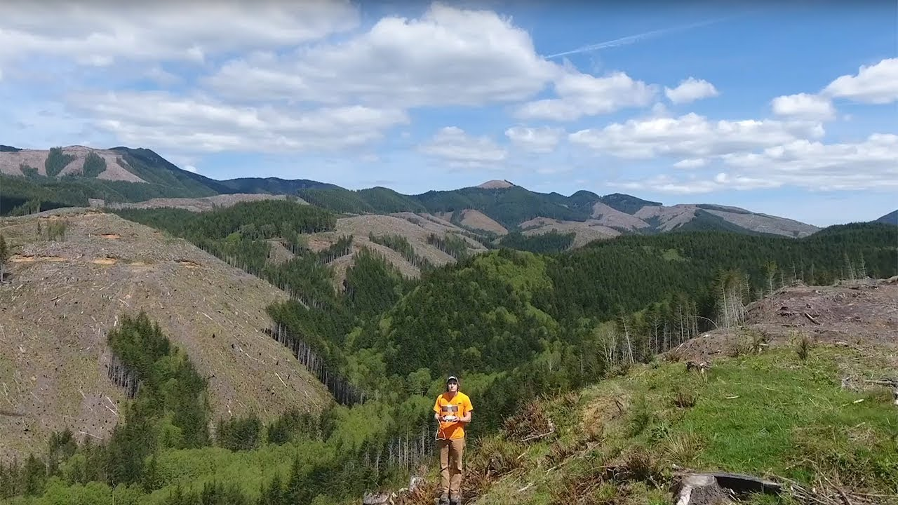 Flying Foresters: Meet Rayonier's Drone Pilots
