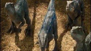 Jurassic World: Raptor training --Digital Copy quality