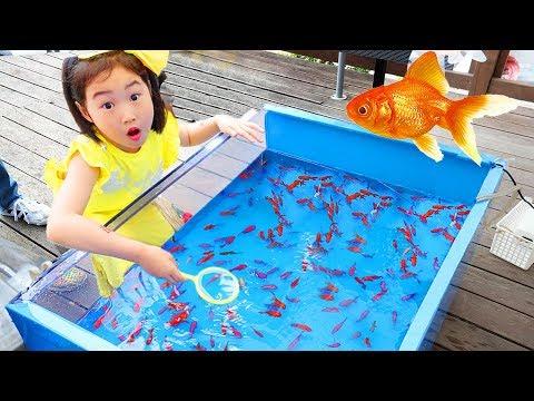 氤措瀸鞚挫潣 頃戫伂韾� 鞎勱赴靸侅柎 雮氺嫓雴�鞚� 氍缄碃旮� 鞛£赴 Catch Real Fish with Pinkfong Fishing Toys