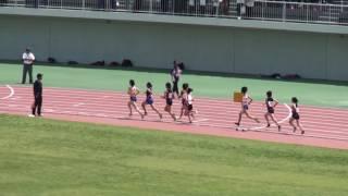 高校女子3000m 決 勝 5月22日 1着 9:41.19 [401] 阿部 菜紅 (3) 茨城キ...