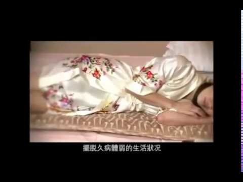 AMLIFE Electric Potential Thermotherapy Mattress Cantonese