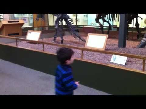 Owen at the Peabody Museum