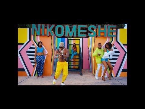 dully-sykes-ft-harmonize---nikomeshe-(official-music-video)