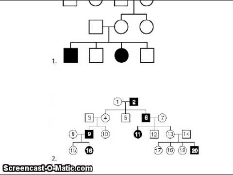 how to read a pedigree chart