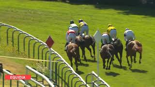 Vidéo de la course PMU PRIX GERALD DE ROCHEFORT