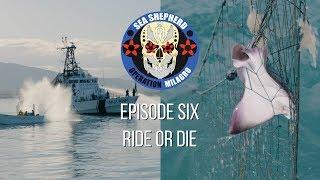 Op Milagro V Episode 6 - RIDE OR DIE