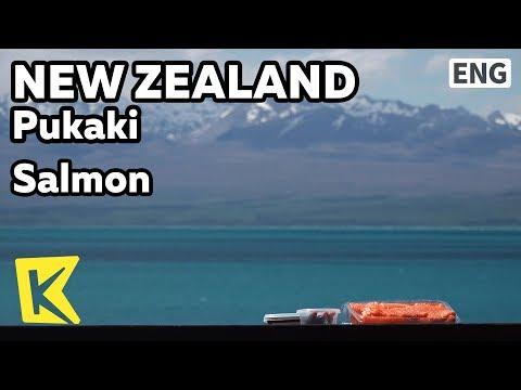 【K】NewZealand Travel-Pukaki[뉴질랜드 여행-푸카키]푸카키 호수, 연어회/Mount Cook Alpine Salmon/Lake/Sashimi/Salmon