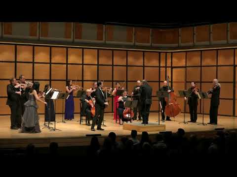Beethoven: Violin Concerto - I. Allegro moderato