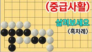 중급사활 #46 (6문제)(3급~10급) screenshot 1